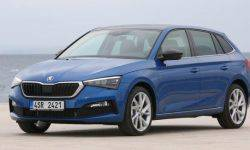 Skoda will take care of the drivers with pollen allergies