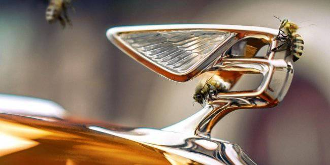Green initiatives: Bentley will produce honey
