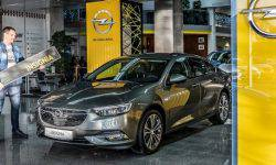 Opel Insignia in the Top. A surprise under the tree?