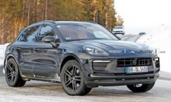"""Tiger-vegetarian"": a future Macan EV"