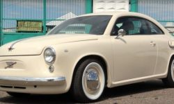 """""""Eukarotic"""": ZAZ can produce a car together with the VW?"""
