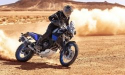 Yamaha Tenere 700 soon in the US