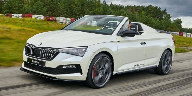 Skoda has unveiled its new Roadster