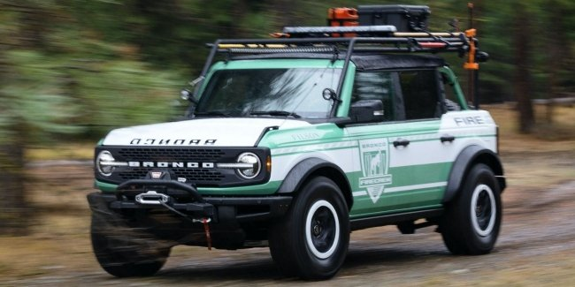Bronco in the service of her forestry