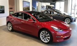 Can't you stop Tesla? The number of registered cars increased by 63%