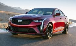 Cadillac and Blackwing's Prospects